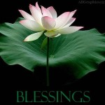 Blessings Flower